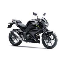 Kawasaki Ninja 300 and Z300 [2013 - Current] Engine Case Cover Set